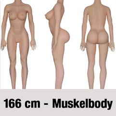 166-cm-MuskelbodyZb3WtdDDxrcou
